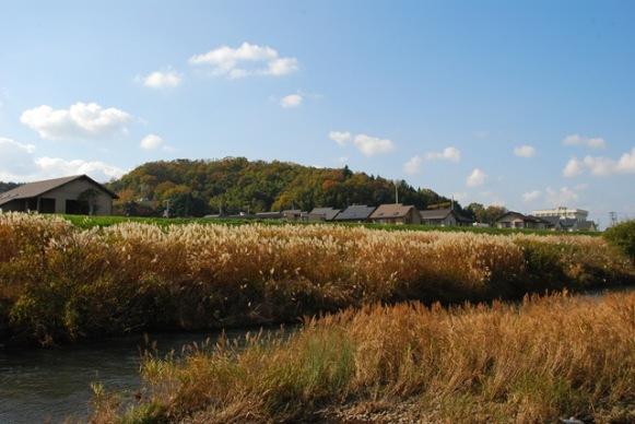 小春日和を歩く 2009-11-23 002