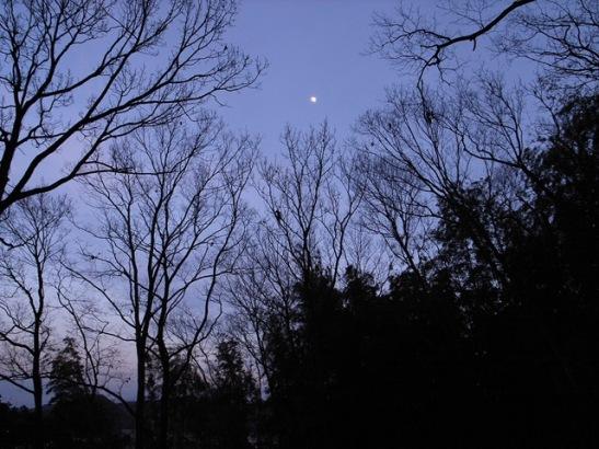 夕方面影山 2010-01-27 033